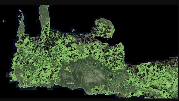 Παρέμβαση Διγαλάκη στον Υφυπουργό Περιβάλλοντος και Ενέργειας για τους δασικούς χάρτες της Π.Ε. Χανίων